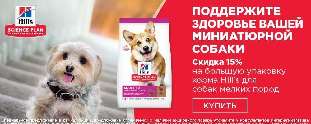 Скидка 15% на корм Hill's для миниатюрных собак (1-31.03)