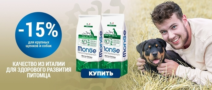 Monge скидка 15% на сухой корм для собак крупных пород (10.02-24.02)