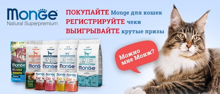 Купите Monge для кошек и получите шанс выиграть крутые призы!