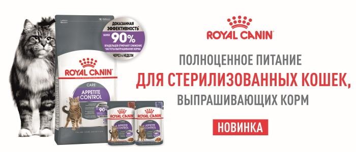 Новинка! Полноценное питание для стерилизованных кошек, выпрашивающих корм